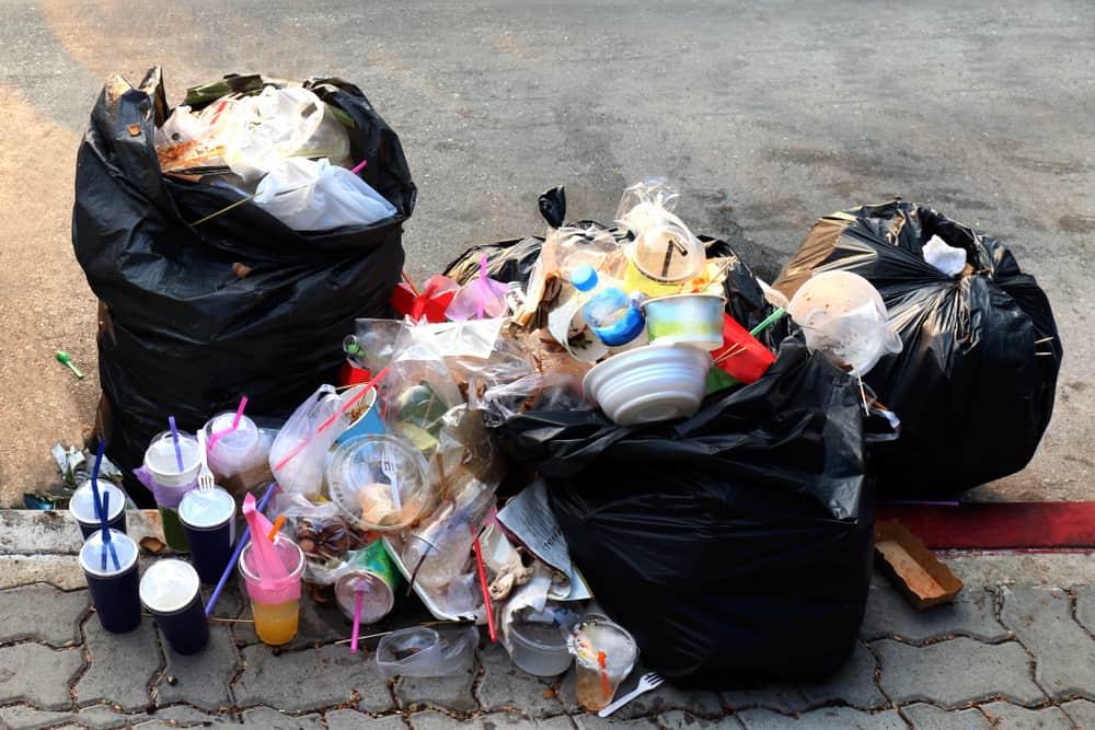 Bisnis Kreatif Dengan Cara Mengolah Sampah Menjadi Rupiah